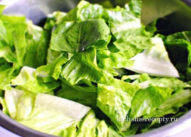 салатные листья для салатика цезарь