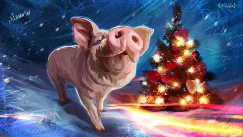 год свиньи 2031