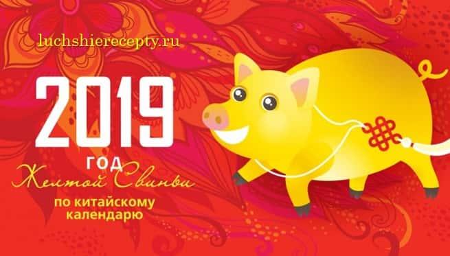Гороскоп на новый 2019 год свиньи