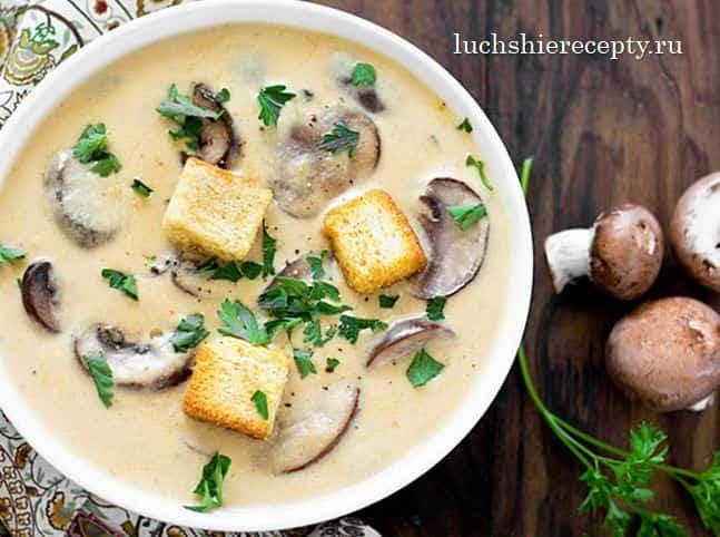 сырный суп с грибами рецепт с плавленым сыром