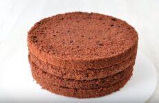 Шоколадный бисквит на кипятке в духовке