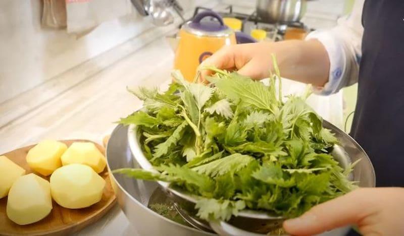 ставим стекать воду с крапивы на дуршлаге